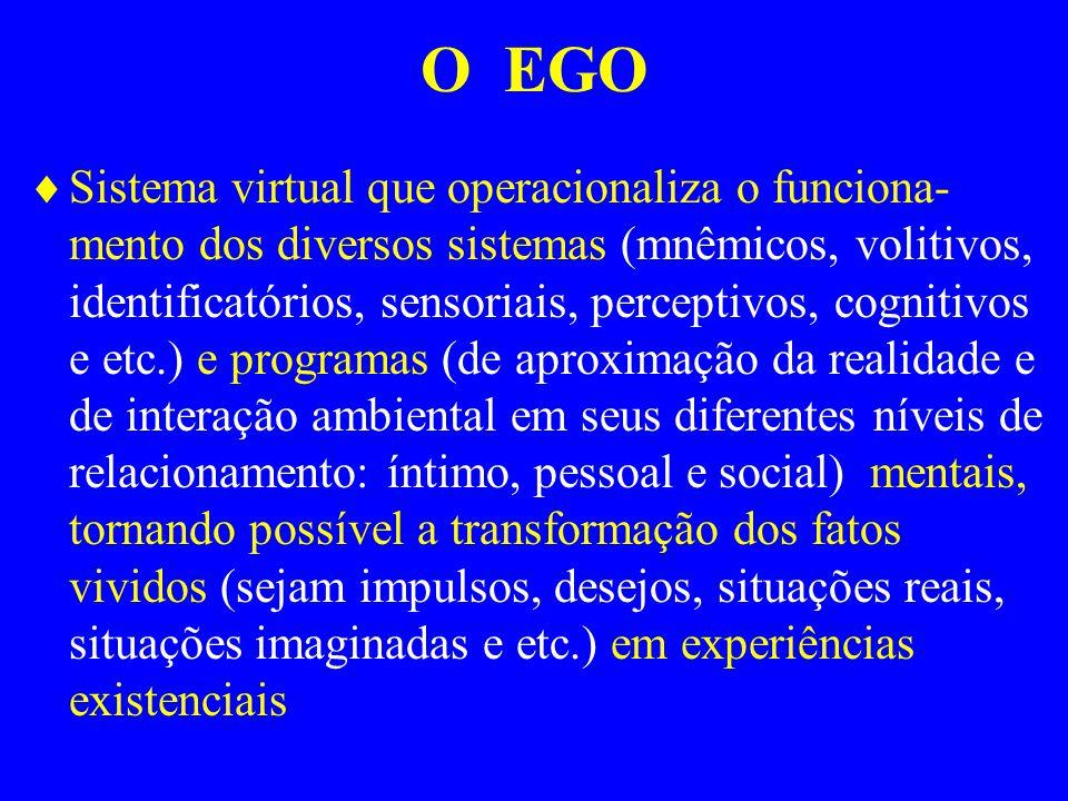 O EGO Sistema virtual que operacionaliza o funciona- mento dos diversos sistemas (mnêmicos, volitivos, identificatórios, sensoriais, perceptivos, cogn