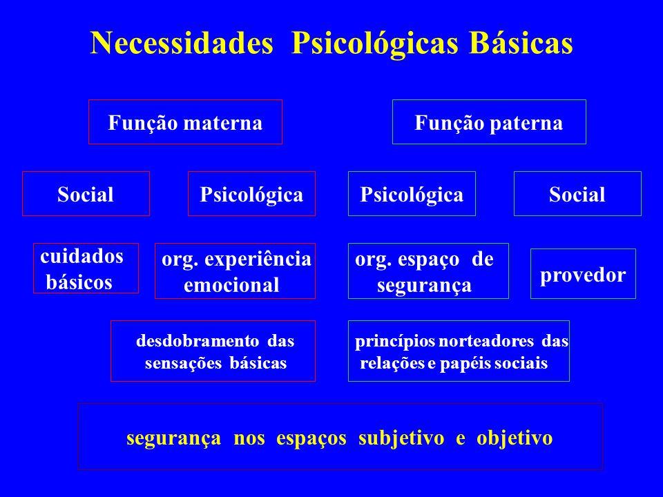 Necessidades Psicológicas Básicas Função maternaFunção paterna PsicológicaSocialPsicológicaSocial desdobramento das sensações básicas princípios norte