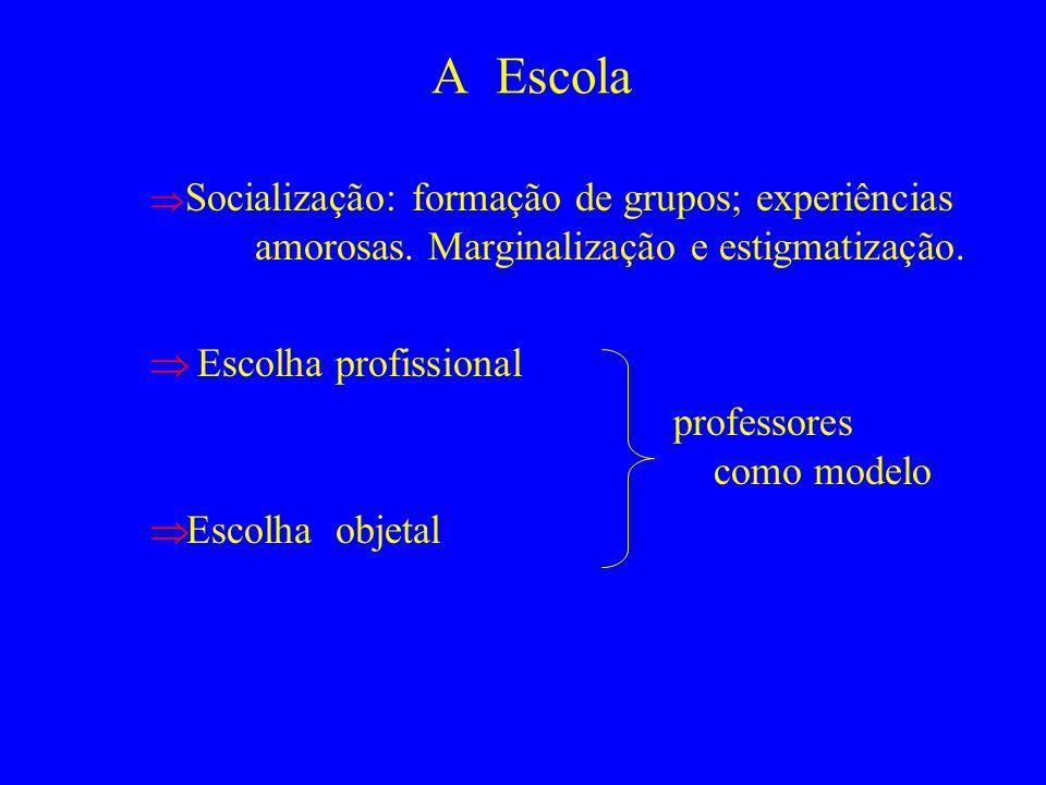 A Escola Socialização: formação de grupos; experiências amorosas. Marginalização e estigmatização. Escolha profissional professores como modelo Escolh