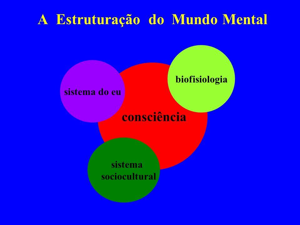 A Estruturação do Mundo Mental consciência sistema do eu sistema sociocultural biofisiologia