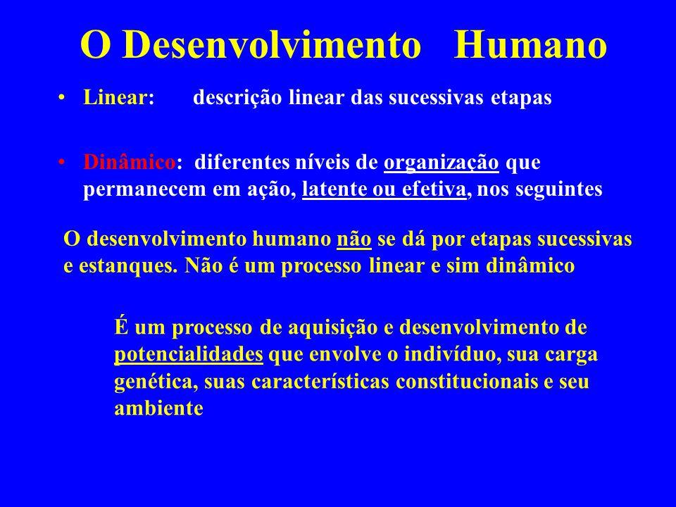 O Desenvolvimento Humano Linear: descrição linear das sucessivas etapas Dinâmico: diferentes níveis de organização que permanecem em ação, latente ou