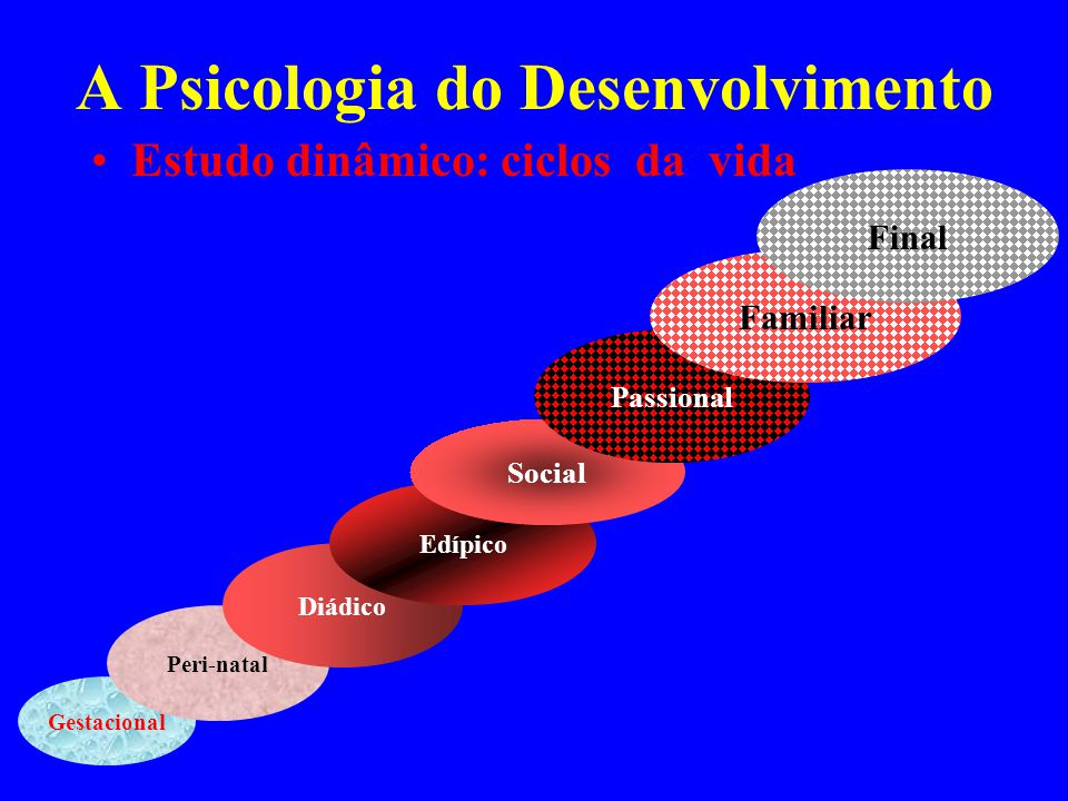 A Psicologia do Desenvolvimento Estudo dinâmico: ciclos da vida Gestacional Peri-natal Diádico Edípico Social Passional Familiar Final