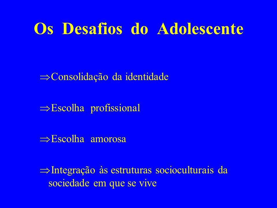 Os Desafios do Adolescente Consolidação da identidade Escolha profissional Escolha amorosa Integração às estruturas socioculturais da sociedade em que