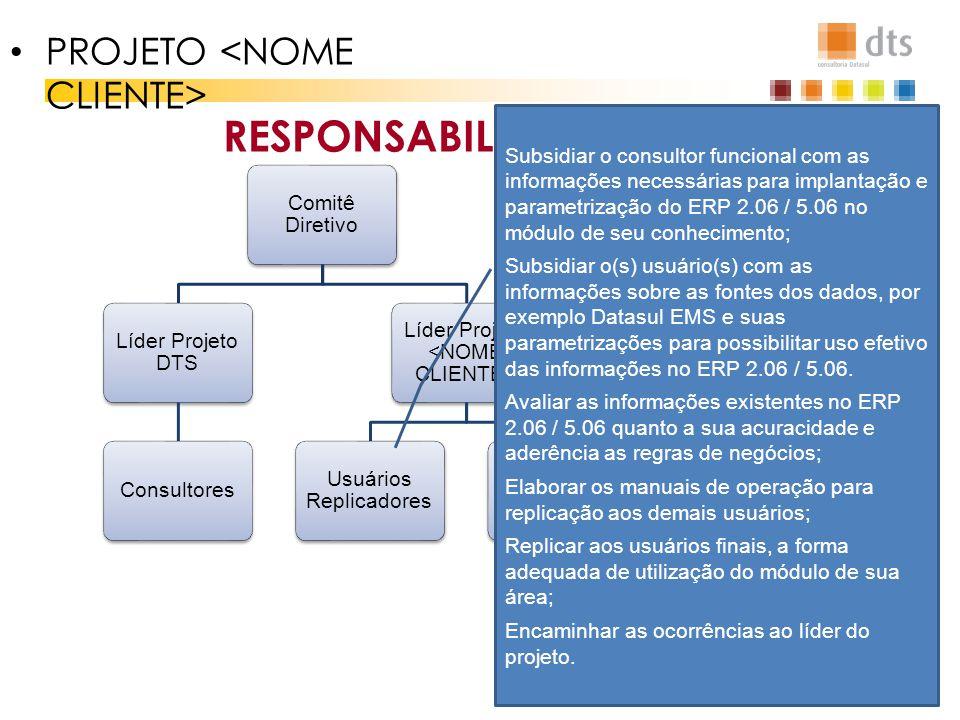 RESPONSABILIDADES Comitê Diretivo Líder Projeto DTS Consultores Líder Projeto Usuários Replicadores Adm ERP PROJETO Subsidiar o consultor funcional co