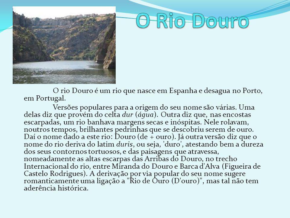 O rio Douro é um rio que nasce em Espanha e desagua no Porto, em Portugal. Versões populares para a origem do seu nome são várias. Uma delas diz que p