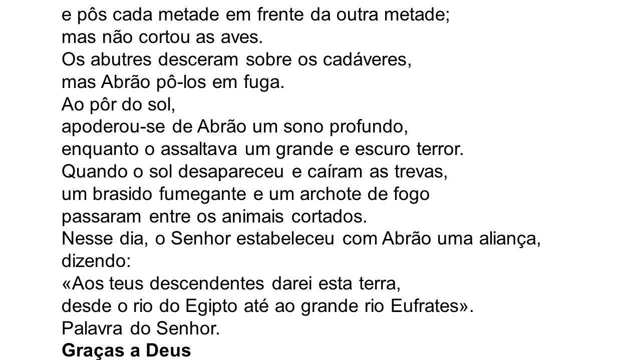 SALMO RESPONSORIAL Salmo 26 (27), 1.7-8.9abc.13-14 (R.