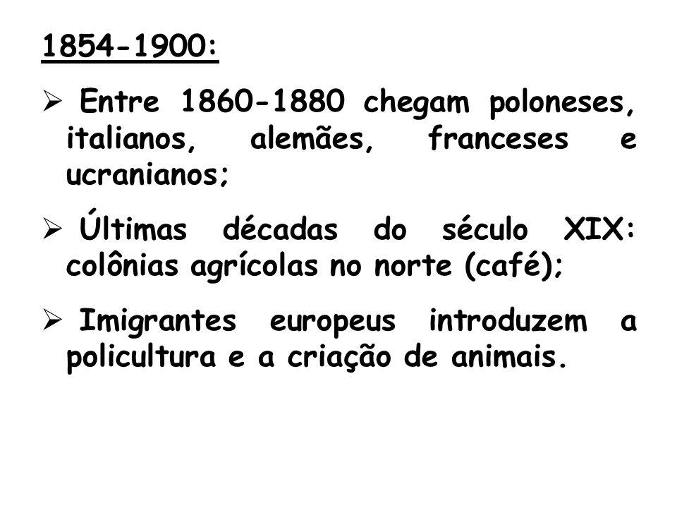 1854-1900: Entre 1860-1880 chegam poloneses, italianos, alemães, franceses e ucranianos; Últimas décadas do século XIX: colônias agrícolas no norte (café); Imigrantes europeus introduzem a policultura e a criação de animais.