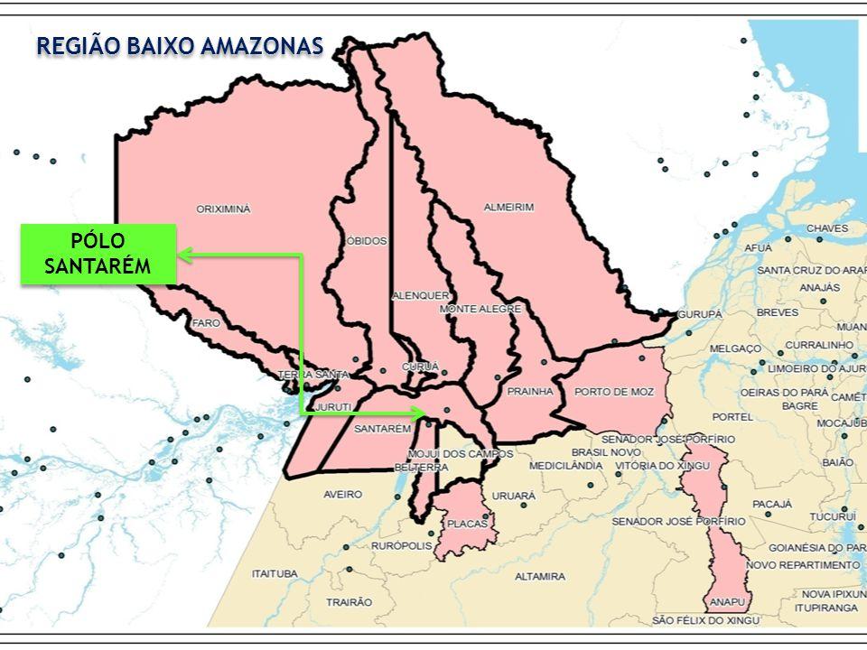 PÓLO SANTARÉM PÓLO SANTARÉM REGIÃO BAIXO AMAZONAS