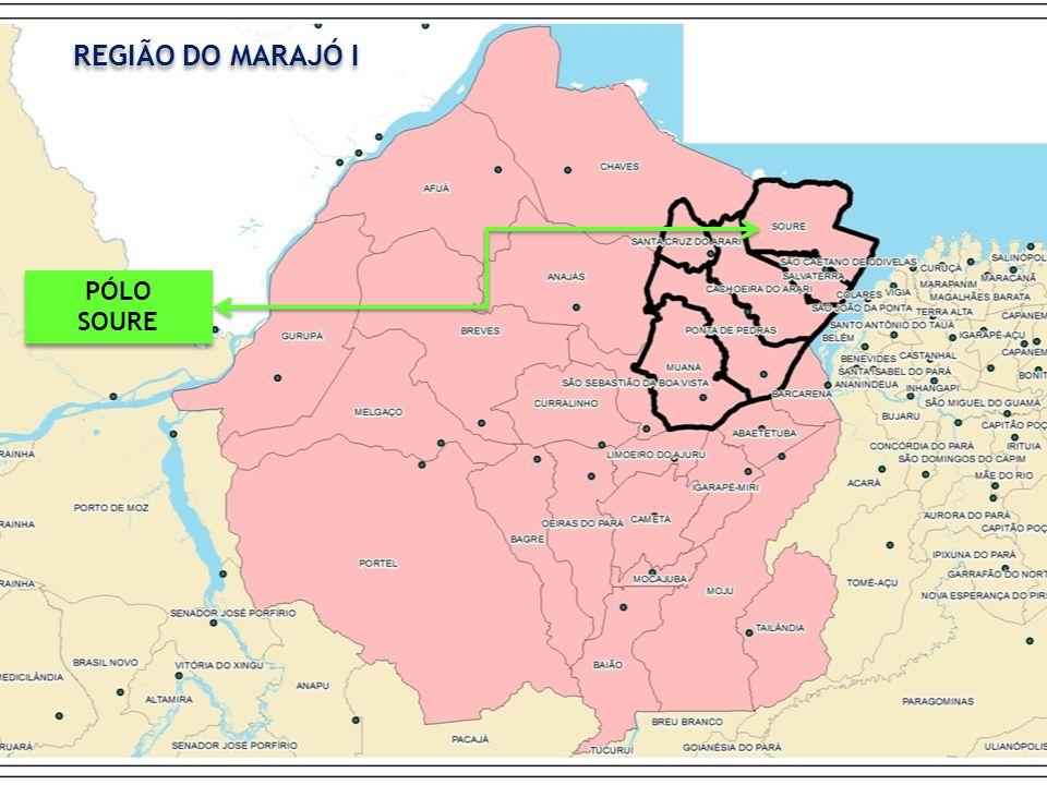 PÓLO SOURE PÓLO SOURE REGIÃO DO MARAJÓ I