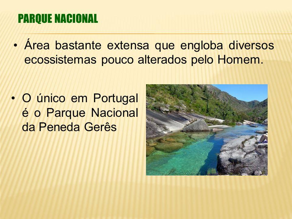 PARQUE NACIONAL Área bastante extensa que engloba diversos ecossistemas pouco alterados pelo Homem. O único em Portugal é o Parque Nacional da Peneda