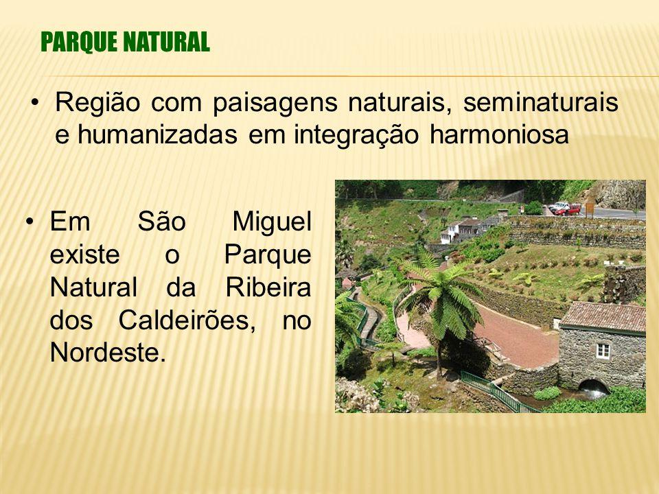 PARQUE NATURAL Região com paisagens naturais, seminaturais e humanizadas em integração harmoniosa Em São Miguel existe o Parque Natural da Ribeira dos