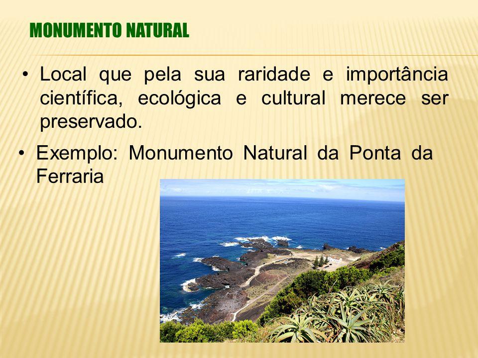 MONUMENTO NATURAL Local que pela sua raridade e importância científica, ecológica e cultural merece ser preservado. Exemplo: Monumento Natural da Pont