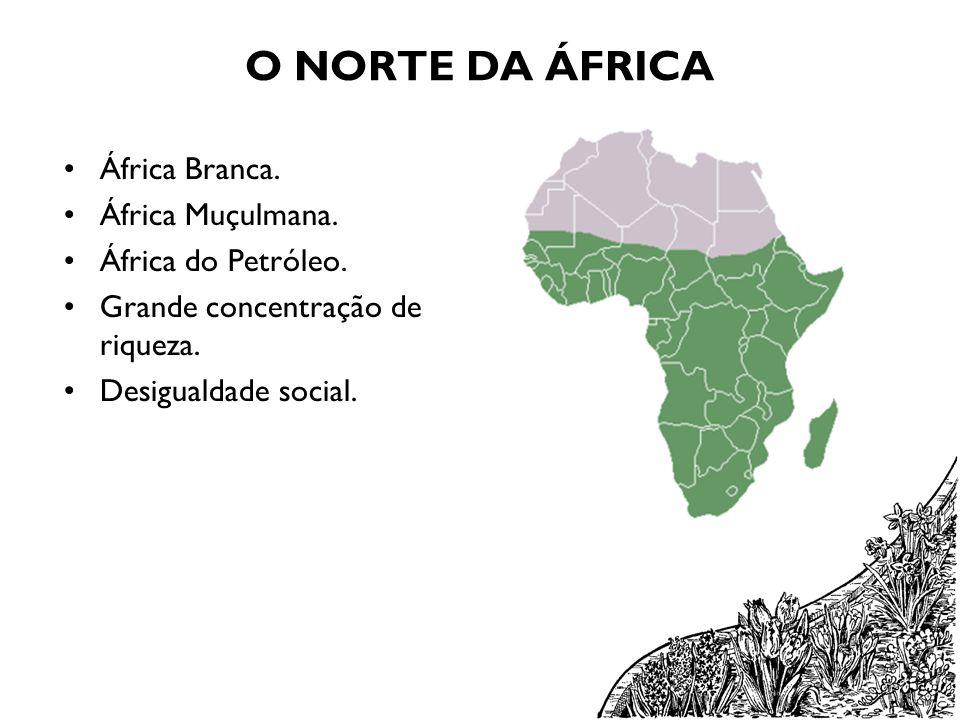 O NORTE DA ÁFRICA África Branca. África Muçulmana. África do Petróleo. Grande concentração de riqueza. Desigualdade social.
