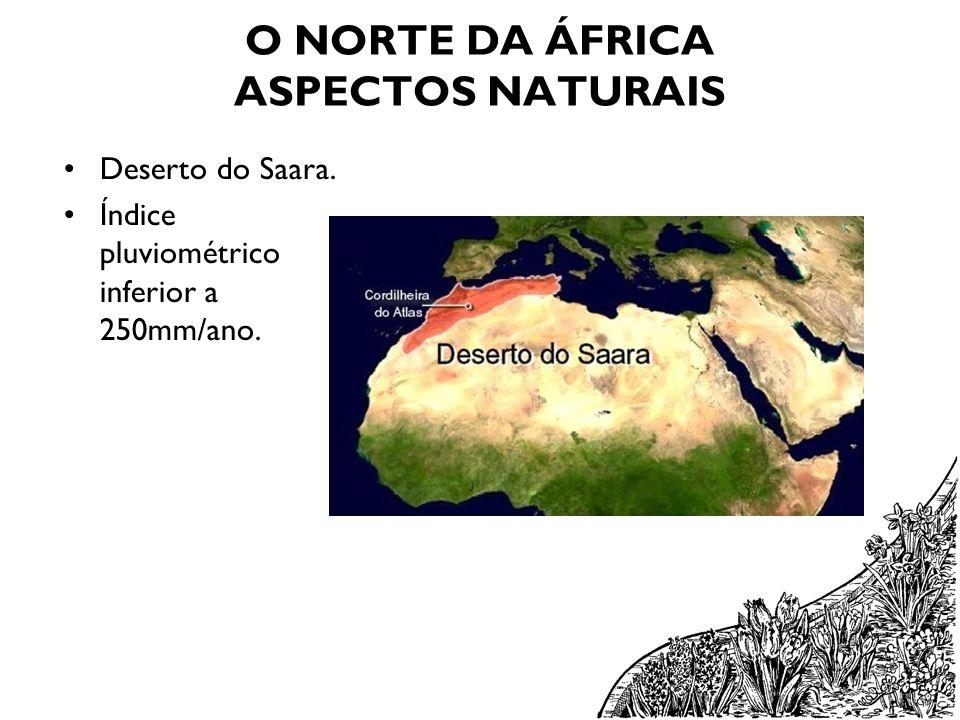 O NORTE DA ÁFRICA ASPECTOS NATURAIS Deserto do Saara. Índice pluviométrico inferior a 250mm/ano.