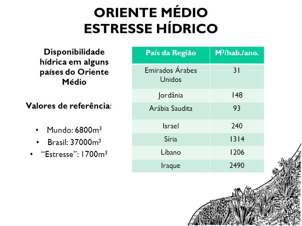 ORIENTE MÉDIO ESTRESSE HÍDRICO Disponibilidade hídrica em alguns países do Oriente Médio Valores de referência: Mundo: 6800m 3 Brasil: 37000m 3 Estres