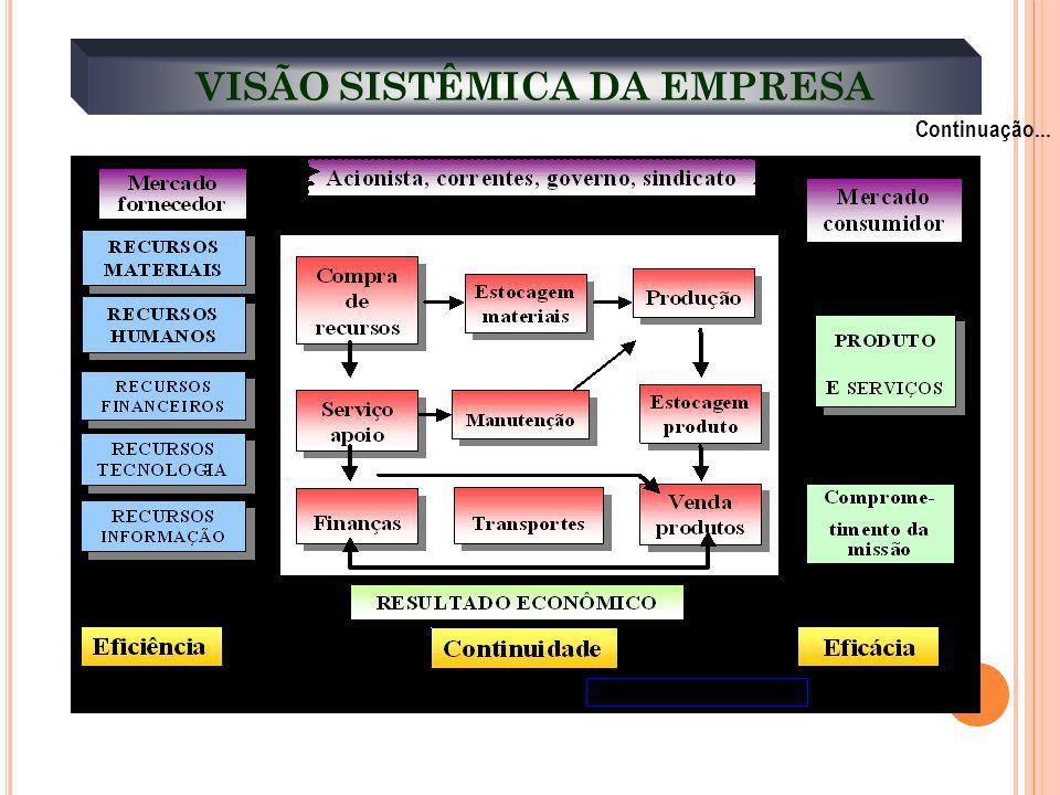 VISÃO SISTÊMICA DA EMPRESA Continuação...