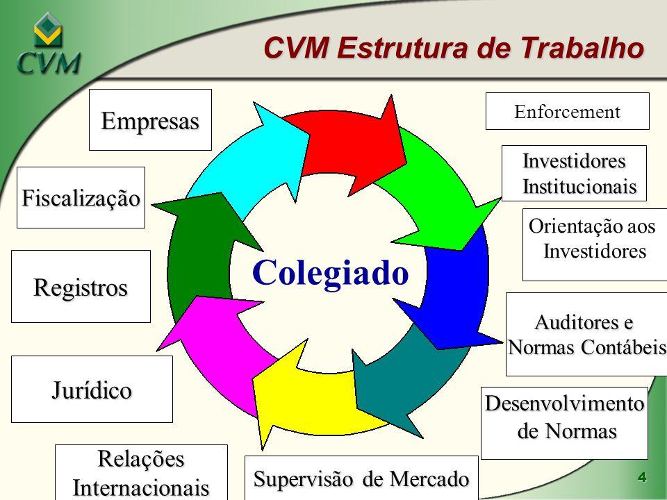 4 CVM Estrutura de Trabalho Colegiado Investidores Institucionais Institucionais Orientação aos Investidores Auditores e Normas Contábeis Desenvolvimento de Normas de Normas Supervisão de Mercado RelaçõesInternacionais Jurídico Registros Fiscalização Empresas Enforcement