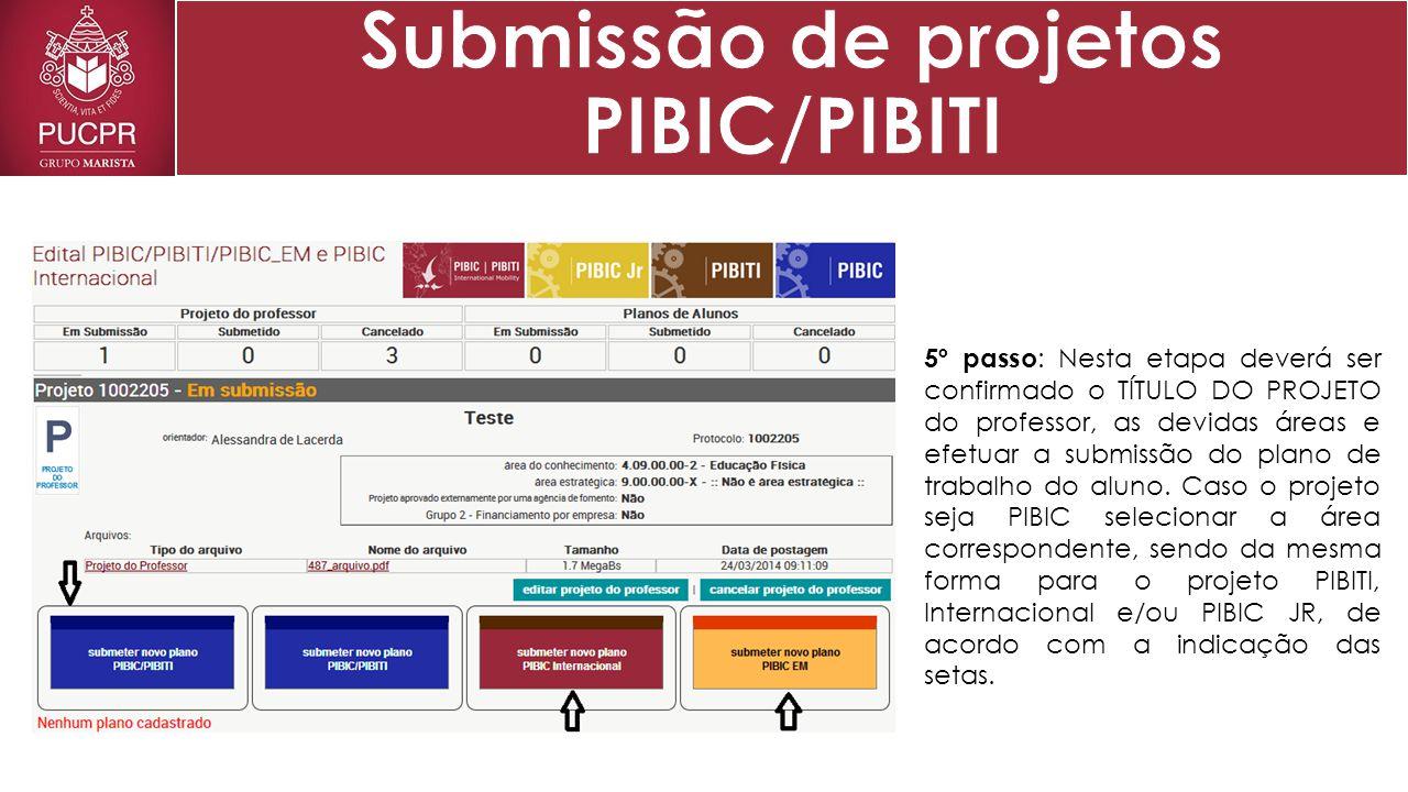 6º passo : Nesta etapa deverá ser confirmado o TÍTULO DO PLANO DE TRABALHO DO ALUNO, bem como a indicação do mesmo.