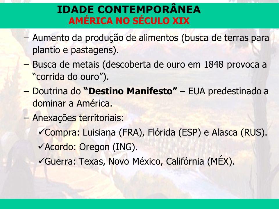 IDADE CONTEMPORÂNEA Prof. José Augusto Fiorin AMÉRICA NO SÉCULO XIX –Aumento da produção de alimentos (busca de terras para plantio e pastagens). –Bus