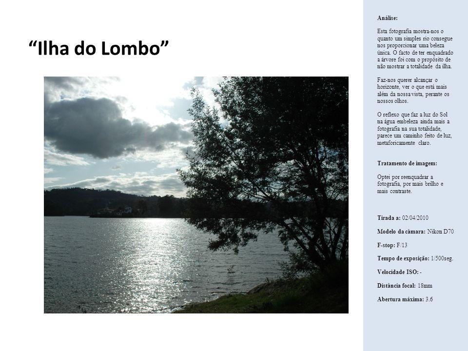 Ilha do Lombo Análise: Esta fotografia mostra-nos o quanto um simples rio consegue nos proporcionar uma beleza única. O facto de ter enquadrado a árvo