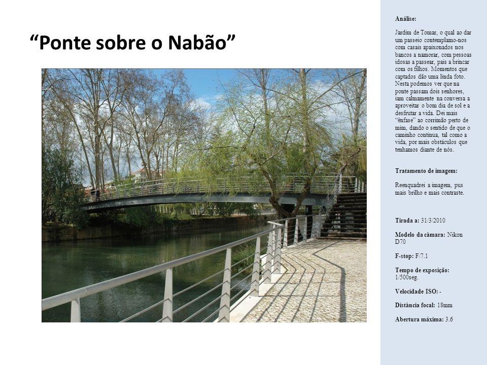 Ponte sobre o Nabão Análise: Jardim de Tomar, o qual ao dar um passeio contemplamo-nos com casais apaixonados nos bancos a namorar, com pessoas idosas