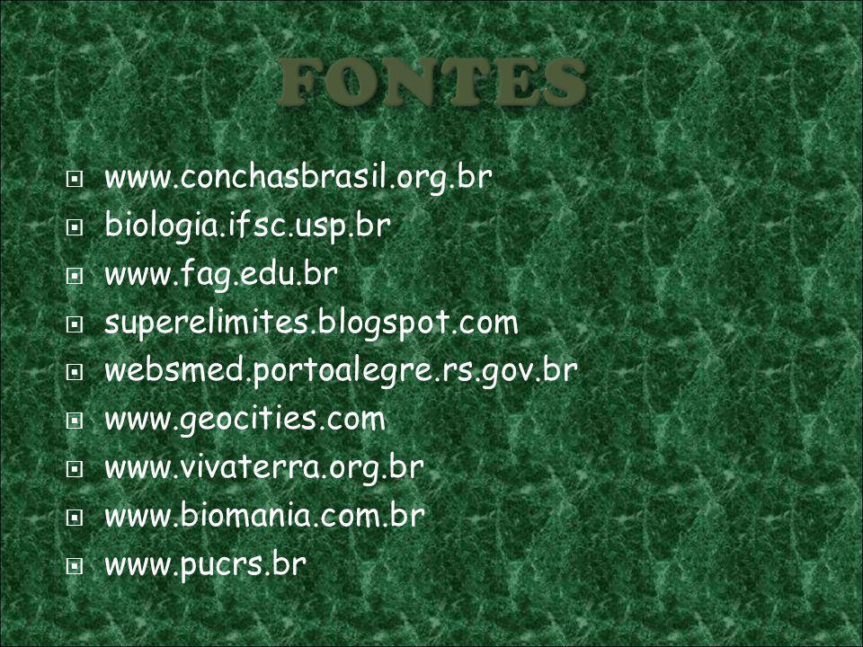www.conchasbrasil.org.br biologia.ifsc.usp.br www.fag.edu.br superelimites.blogspot.com websmed.portoalegre.rs.gov.br www.geocities.com www.vivaterra.