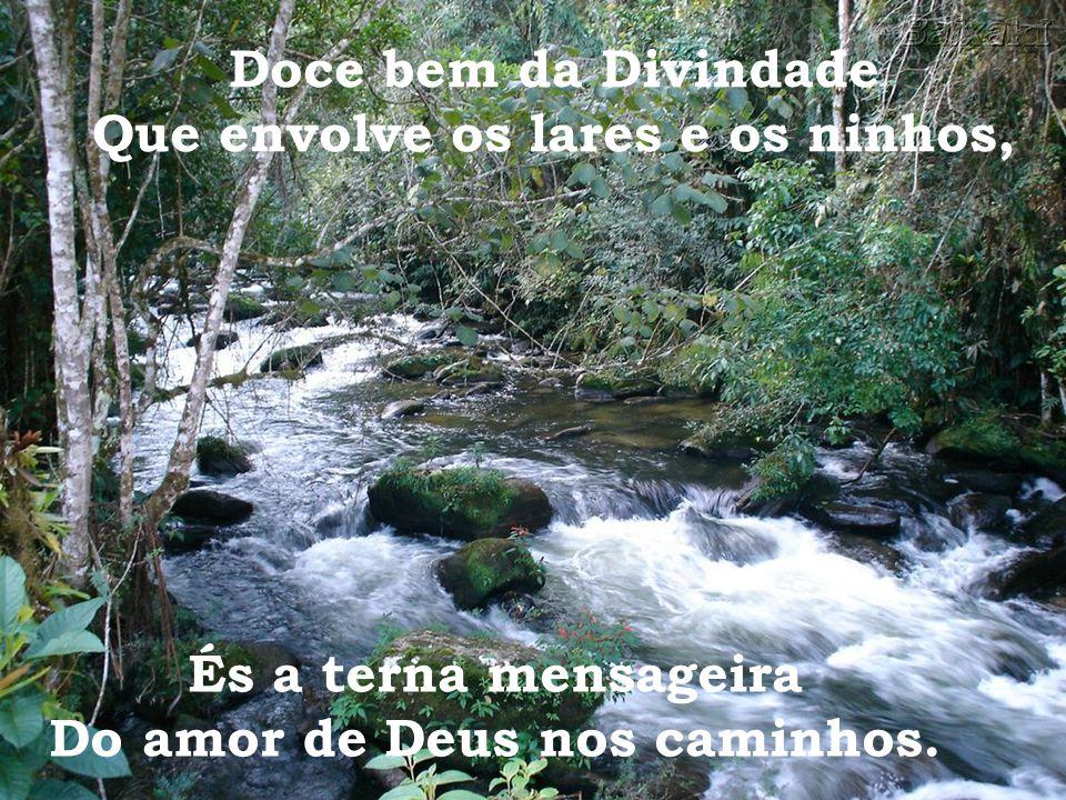 Garantes o dom da vida Nas luzes da Natureza. Água santa, irmã da paz, Da abundância, da limpeza,