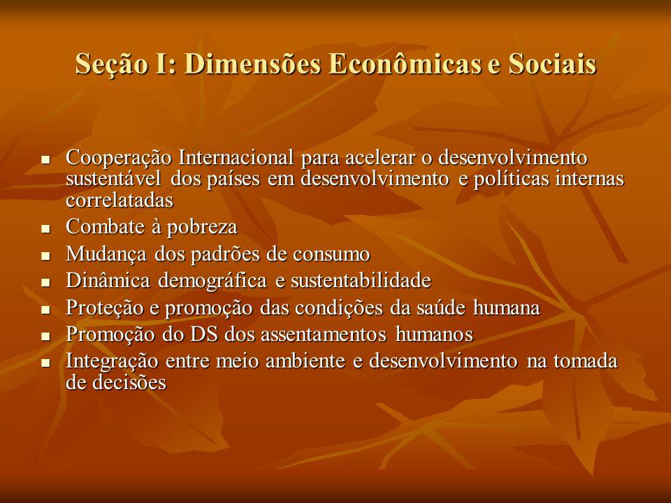 Seção I: Dimensões Econômicas e Sociais Cooperação Internacional para acelerar o desenvolvimento sustentável dos países em desenvolvimento e políticas