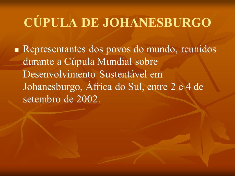 CÚPULA DE JOHANESBURGO Representantes dos povos do mundo, reunidos durante a Cúpula Mundial sobre Desenvolvimento Sustentável em Johanesburgo, África