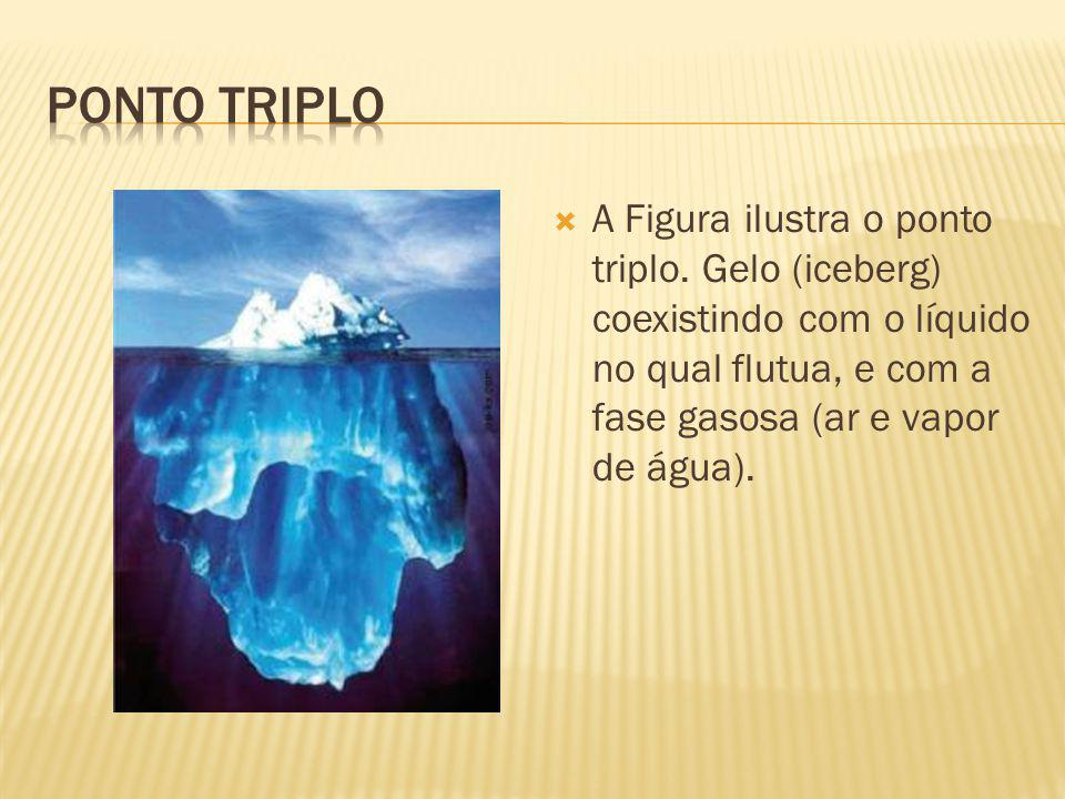A Figura ilustra o ponto triplo.