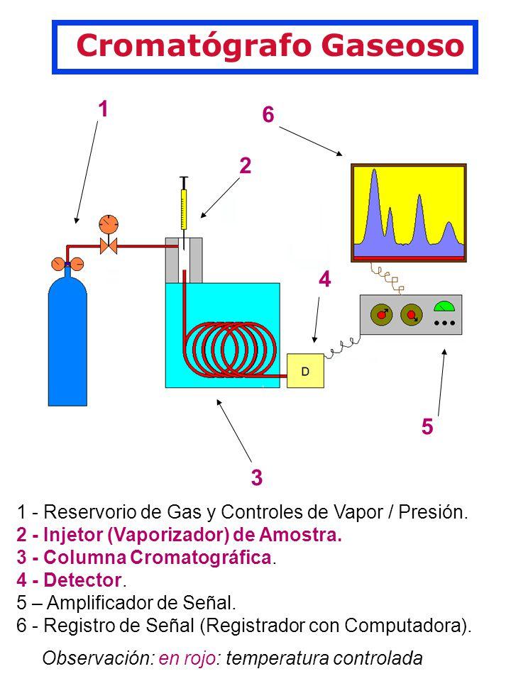 Cromatógrafo Gaseoso 1 2 3 4 6 5 1 - Reservorio de Gas y Controles de Vapor / Presión.