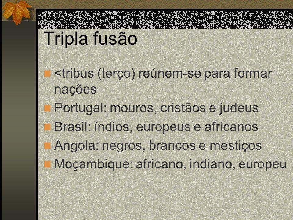 Tripla fusão <tribus (terço) reúnem-se para formar nações Portugal: mouros, cristãos e judeus Brasil: índios, europeus e africanos Angola: negros, bra