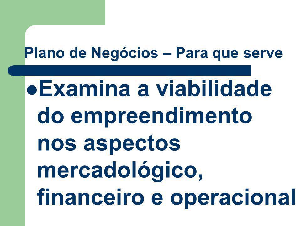 Plano de Negócios – A quem se destina Público Alvo (cont.) Investidores – entidades de capital de risco, pessoas jurídicas, bancos de investimento etc.