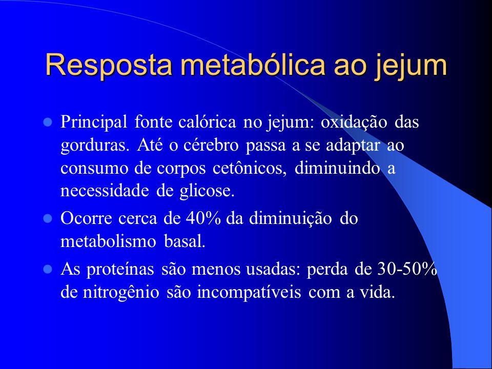 Resposta metabólica ao jejum Principal fonte calórica no jejum: oxidação das gorduras. Até o cérebro passa a se adaptar ao consumo de corpos cetônicos