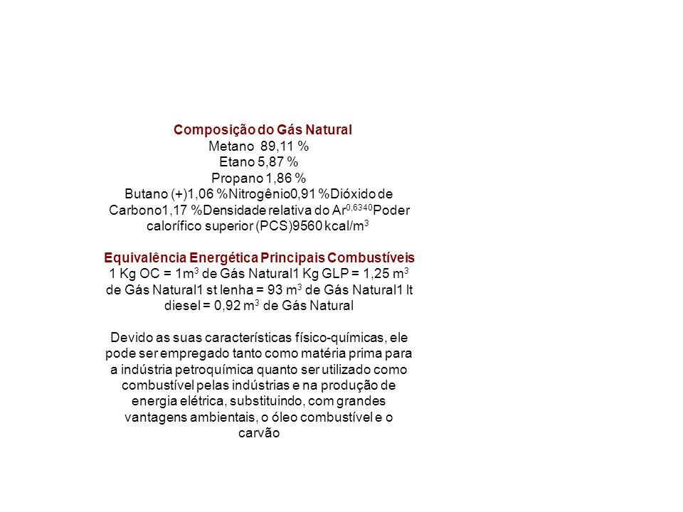 Composição do Gás Natural Metano 89,11 % Etano 5,87 % Propano 1,86 % Butano (+)1,06 %Nitrogênio0,91 %Dióxido de Carbono1,17 %Densidade relativa do Ar 0,6340 Poder calorífico superior (PCS)9560 kcal/m 3 Equivalência Energética Principais Combustíveis 1 Kg OC = 1m 3 de Gás Natural1 Kg GLP = 1,25 m 3 de Gás Natural1 st lenha = 93 m 3 de Gás Natural1 lt diesel = 0,92 m 3 de Gás Natural Devido as suas características físico-químicas, ele pode ser empregado tanto como matéria prima para a indústria petroquímica quanto ser utilizado como combustível pelas indústrias e na produção de energia elétrica, substituindo, com grandes vantagens ambientais, o óleo combustível e o carvão