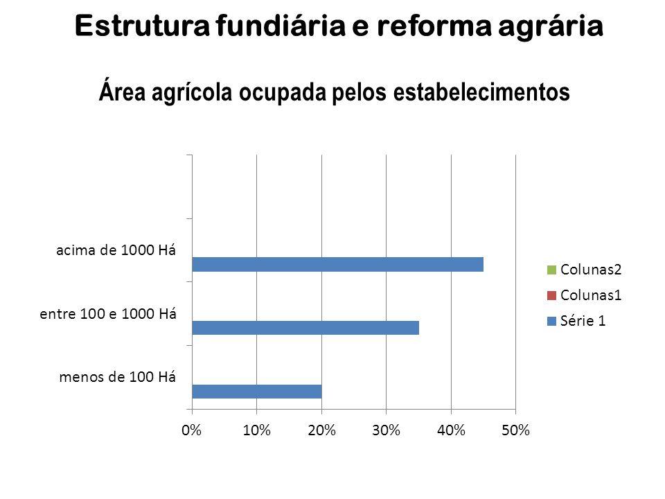 Estrutura fundiária e reforma agrária Área agrícola ocupada pelos estabelecimentos