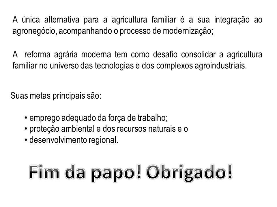 A única alternativa para a agricultura familiar é a sua integração ao agronegócio, acompanhando o processo de modernização; A reforma agrária moderna