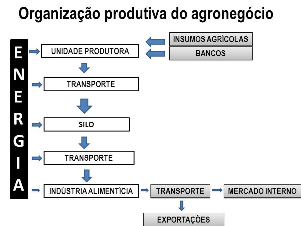Organização produtiva do agronegócio ENERGIAENERGIA UNIDADE PRODUTORA TRANSPORTE SILO TRANSPORTE INDÚSTRIA ALIMENTÍCIA INSUMOS AGRÍCOLAS BANCOS TRANSP