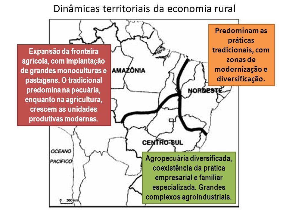 Dinâmicas territoriais da economia rural Predominam as práticas tradicionais, com zonas de modernização e diversificação. Agropecuária diversificada,