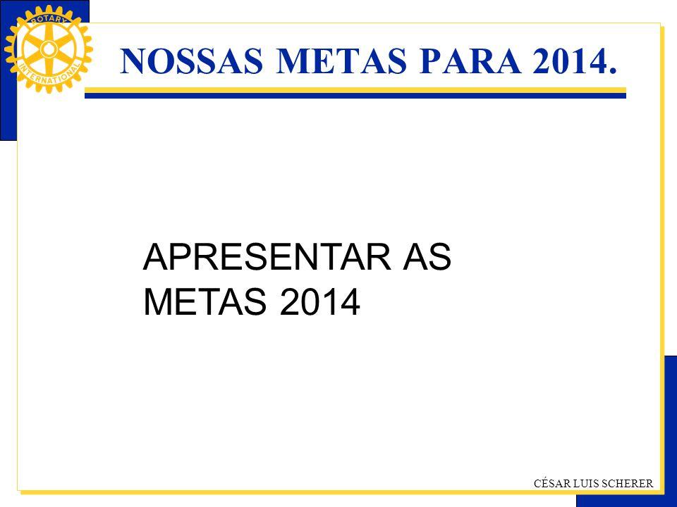 CÉSAR LUIS SCHERER NOSSAS METAS PARA 2014. APRESENTAR AS METAS 2014
