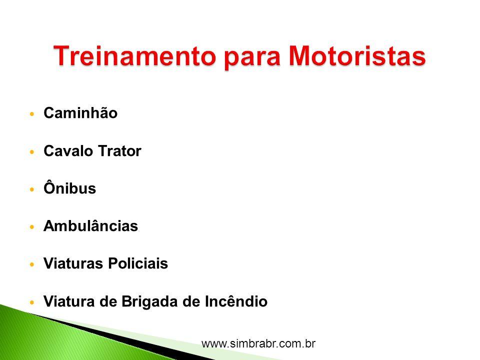 www.simbrabr.com.br Canavial Estrada