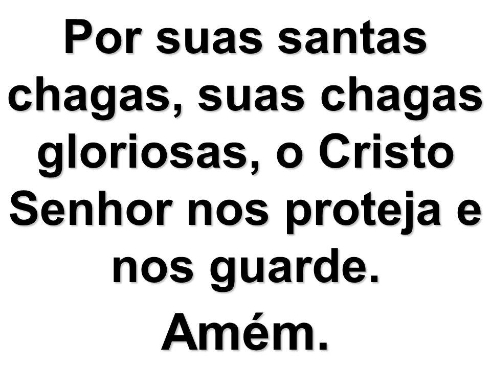 Por suas santas chagas, suas chagas gloriosas, o Cristo Senhor nos proteja e nos guarde. Amém.