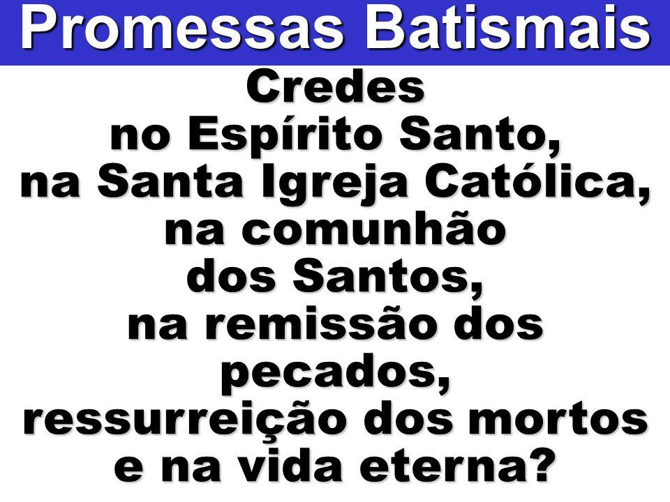 Credes no Espírito Santo, na Santa Igreja Católica, na comunhão dos Santos, na remissão dos pecados, ressurreição dos mortos e na vida eterna? Promess