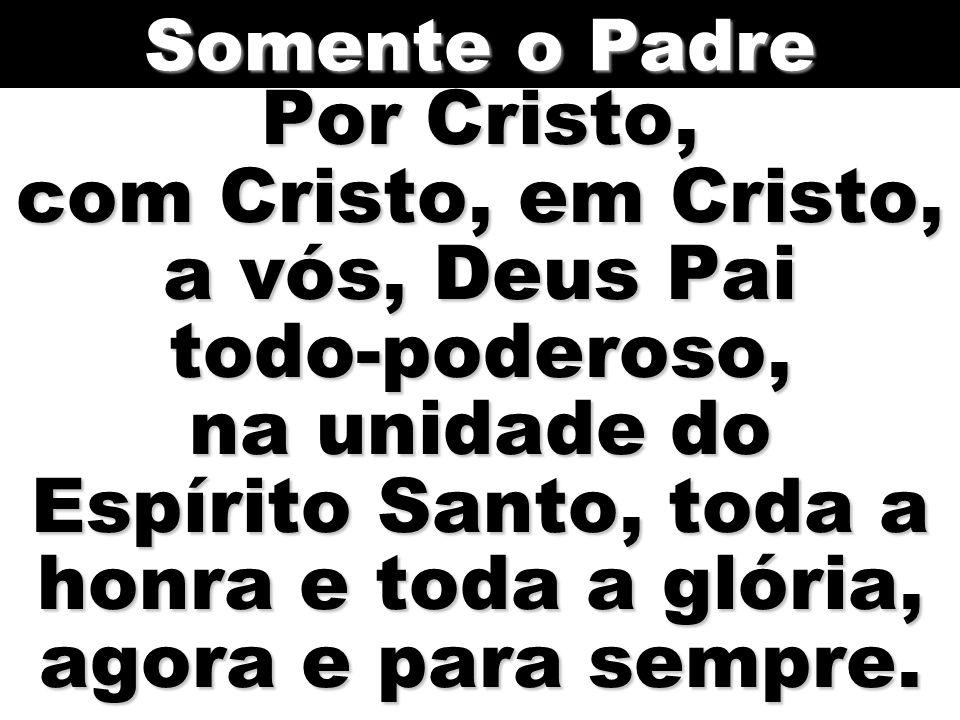 Por Cristo, com Cristo, em Cristo, a vós, Deus Pai todo-poderoso, na unidade do Espírito Santo, toda a honra e toda a glória, agora e para sempre.
