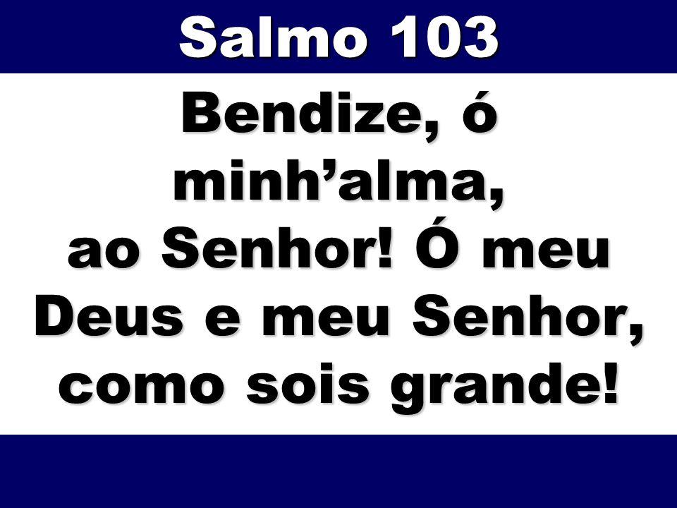 Bendize, ó minhalma, ao Senhor! Ó meu Deus e meu Senhor, como sois grande! Salmo 103