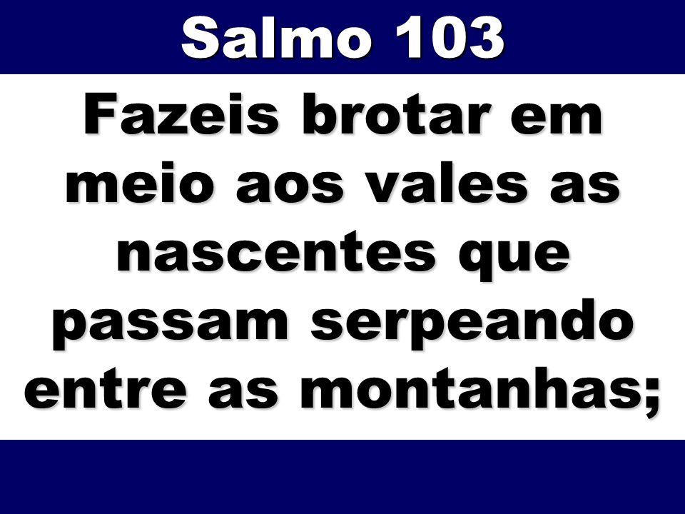 Fazeis brotar em meio aos vales as nascentes que passam serpeando entre as montanhas; Salmo 103