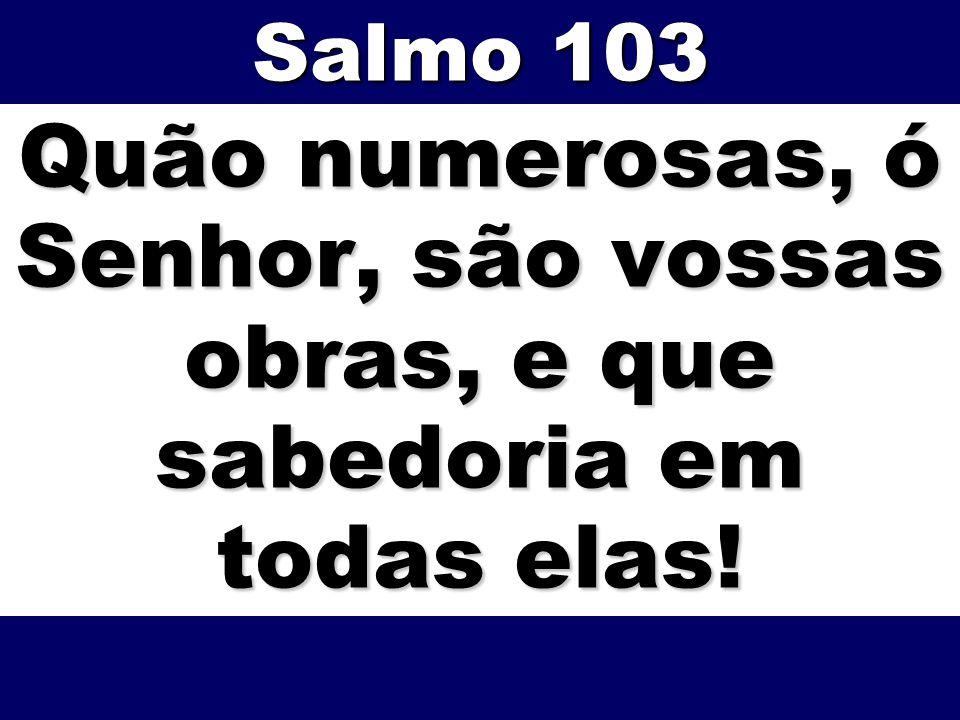 Quão numerosas, ó Senhor, são vossas obras, e que sabedoria em todas elas! Salmo 103