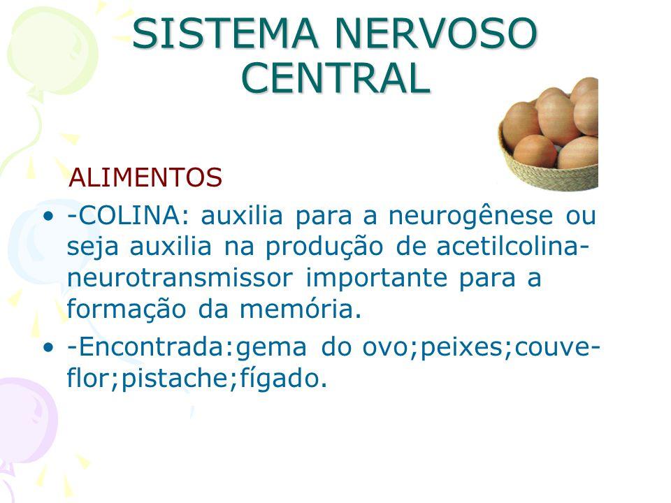 SISTEMA NERVOSO CENTRAL ALIMENTOS -COLINA: auxilia para a neurogênese ou seja auxilia na produção de acetilcolina- neurotransmissor importante para a