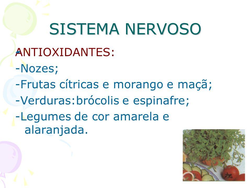 SISTEMA NERVOSO ANTIOXIDANTES: -Nozes; -Frutas cítricas e morango e maçã; -Verduras:brócolis e espinafre; -Legumes de cor amarela e alaranjada. - --