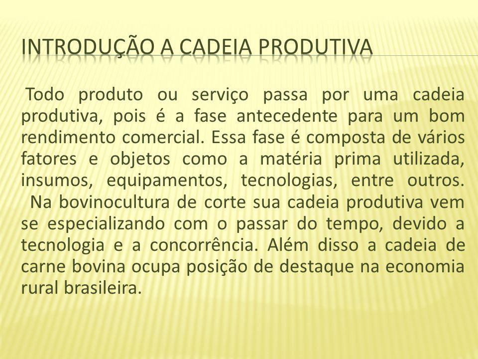 Todo produto ou serviço passa por uma cadeia produtiva, pois é a fase antecedente para um bom rendimento comercial. Essa fase é composta de vários fat